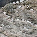 Felsenwelt Erdener Klettersteig