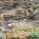Felsenwelt am Klettersteig Erden